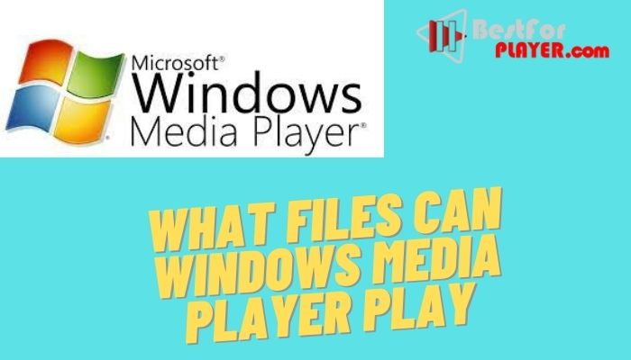Can Windows Media Player play all formats