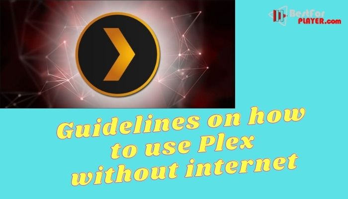 Guidelines on how to use Plex without internet