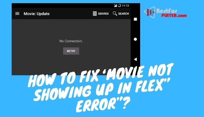 """How to fix 'movie not showing up in flex"""" error"""""""