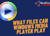 What files can windows media player play