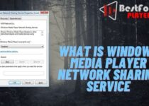 What is windows media player network sharing service